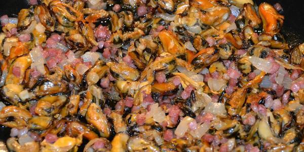 Muscheln für Anfänger