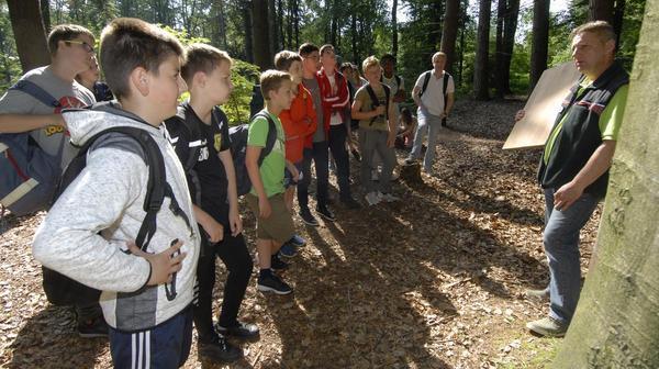 Burger Waldjugendspiele: Schule unter Baumwipfeln