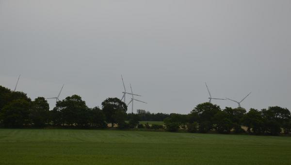 Die Regionalpläne Wind sind auf der Zielgeraden