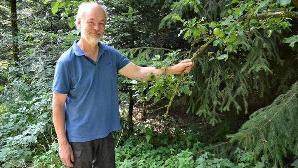 Vielfalt im Wald ist Naturschutz