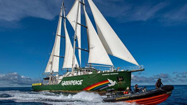 50 Jahre Greenpeace: Wichtig und wirkmächtig
