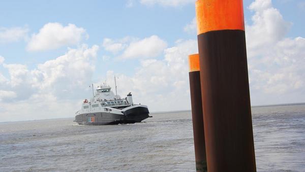 Elbefähre belebt Geschäfte