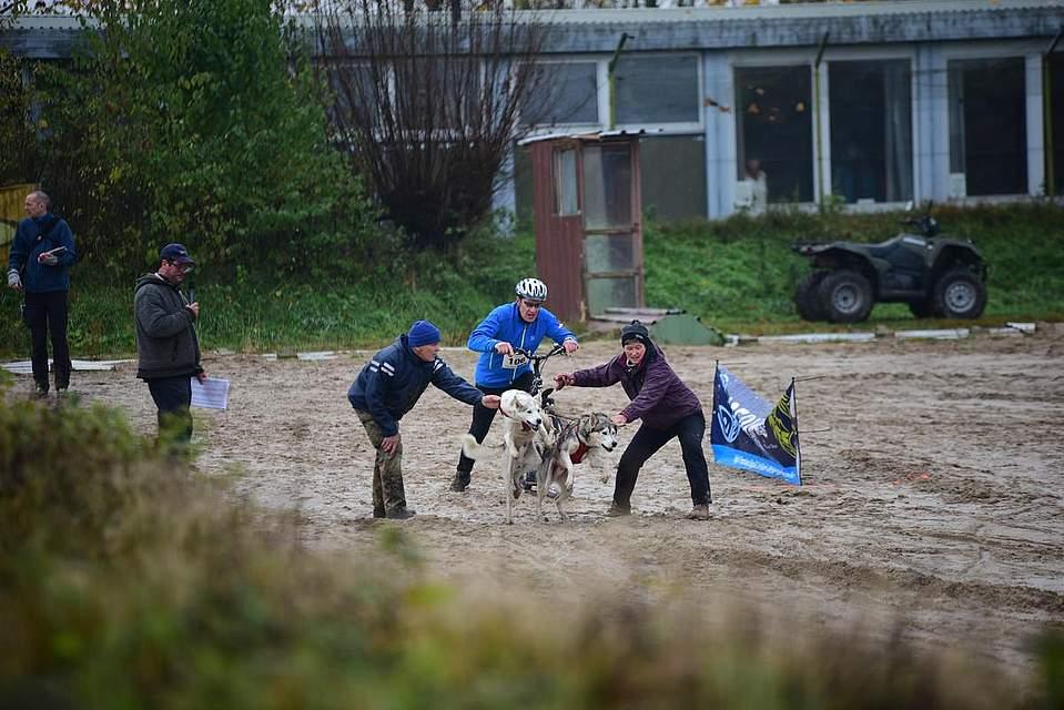 Schlittenhunderennen auf dem Grünthalring. Foto: Tiessen