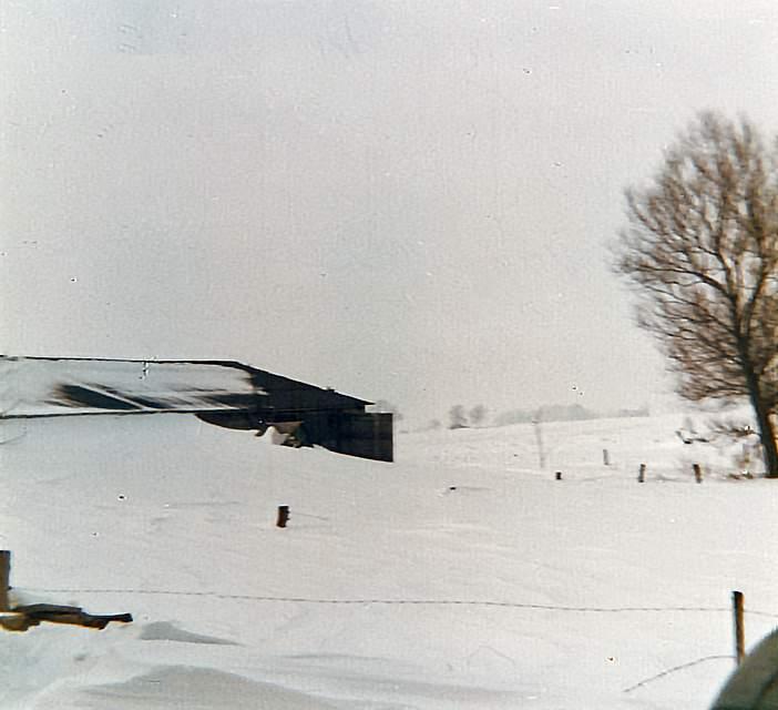 """Schneewehen auf dem Hof und auf der Straße. Hilde Wohlenberg aus Brunsbüttel erinnert sich: """"Unser Hof war mehrere Tage nicht erreichbar. Die Milch konnte nicht abgeholt werden von der Meierei. Zum Glück gab es keinen Stromausfall, die Heizung war intakt."""""""