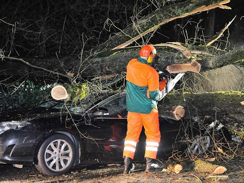 Bei heftigem Sturm ist in Wuppertal ein Baum auf ein geparktes Auto gestürzt. Die Straße musste für die Aufräumarbeiten mehrere Stunden gesperrt werden. Foto: Holger Battefeld