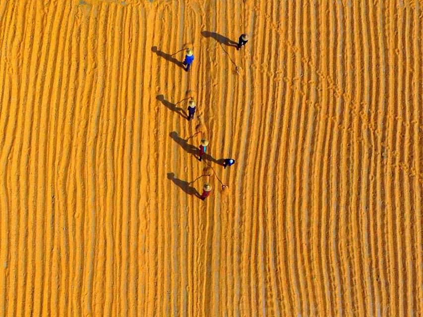 Im ostchinesischen Linyi trocknen Bauern frisch geernteten Mais. Foto: Wu Jiquan/XinHua