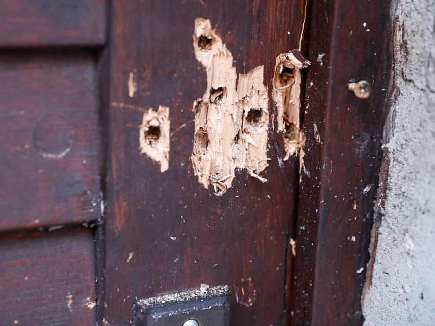 Einschusslöcher in der Tür der Synagoge in Halle. Der schwerbewaffnete rechtsextremistische Attentäter hatte versucht, in das jüdische Gotteshaus einzudringen, wo gerade das Fest Jom Kippur gefeiert wurde. Foto: Jan Woitas/dpa-Zentralbild/dpa