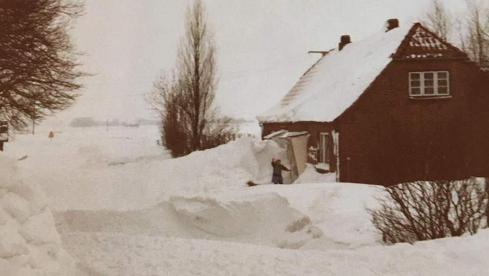 das Foto von Gabi Claussen wurde in Österdeichstrich an der B 203 gemacht.
