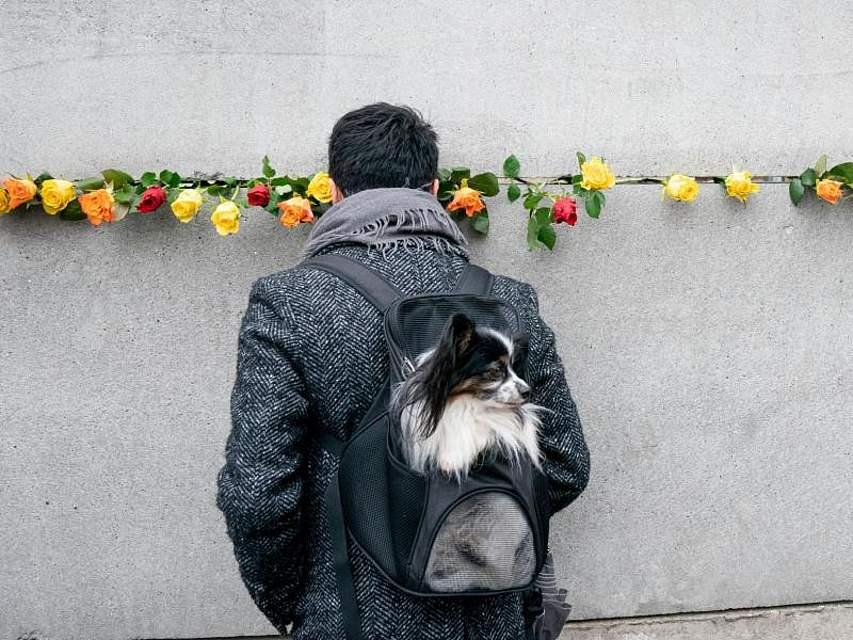 In Deutschland, wie hier in Berlin, wird dem Mauerfall vor 30 Jahren gedacht. Bei einer Gedenkveranstaltung steht ein Mann vor einem Stück Berliner Mauer. Foto: Kay Nietfeld/dpa