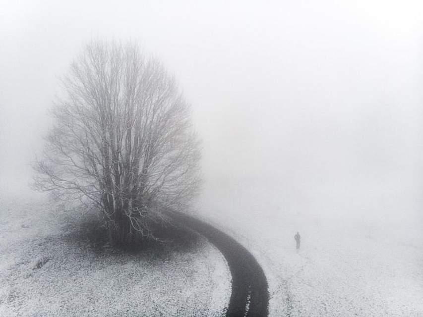 Dichter Nebel zieht über eine frisch verschneite Landschaft in der Schweiz. Foto: Gian Ehrenzeller/KEYSTONE/dpa