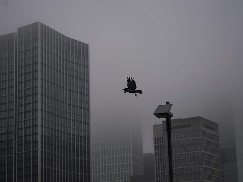 Im Nieselregen und Dunst verschwinden die Hochhäuser der Mainmetropole Frankfurt. Foto: Frank Rumpenhorst