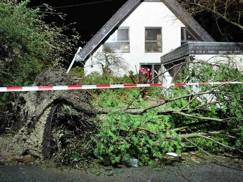 Umgeknickte Bäume, abgedeckte Häuser, beschädigte Autos: Ein Tornado ist durch die Eifel-Gemeinde Roetgen gefegt. Schwer verletzt wurde niemand. Foto: Ralf Roeger