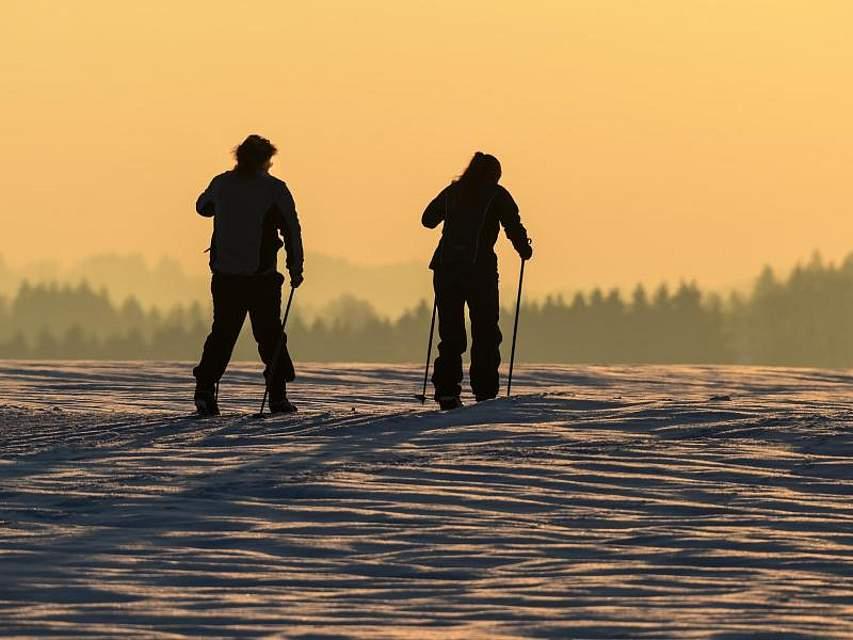 Zwei Langläufer sind kurz vor Sonnenuntergang auf einer Loipe in Rohrdorf unterwegs. Foto: Felix Kästle