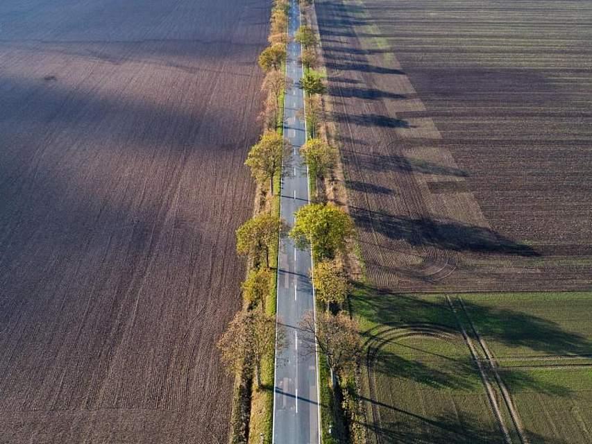 Im Landkreis Hildesheim macht sich der Herbst eindeutig bemerkbar. Foto: Julian Stratenschulte/dpa