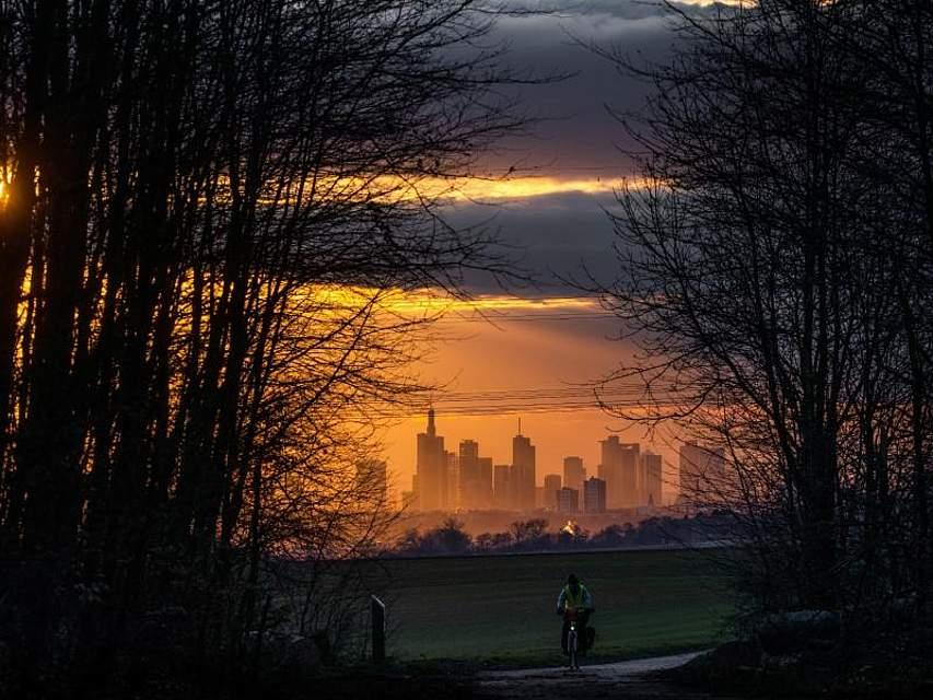Die Abendsonne scheint durch eine Baumreihe im hessischen Niederdorfelden, während im Hintergrund die Frankfurter Bankenskyline zu erkennen ist. Foto: Frank Rumpenhorst/dpa