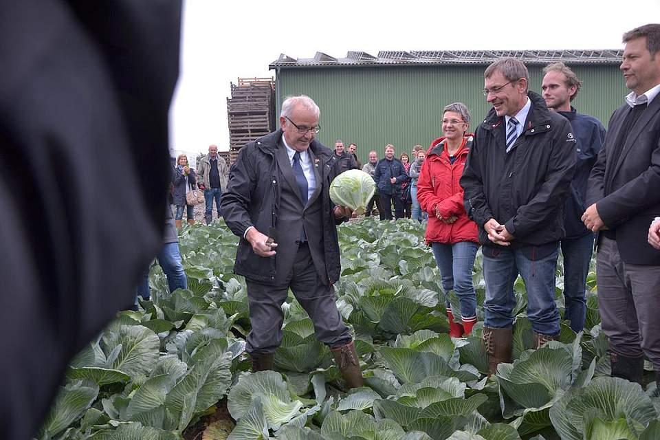 Kreispräsident Hans-Harald Böttger versteht sich auf das Schneiden von Kohl.